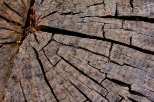 Farba na drevo v matných odtieňoch